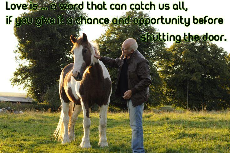 LOVE IS ...VERSE  www.zazzle.co.uk/kompas_art #love #alanjporterart #kompas #apache #zazzle #horse #verse #trees #thoughts