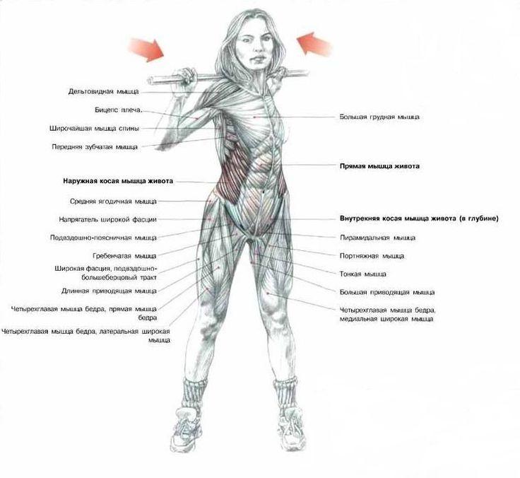 упражнения с грифом на ягодицы - Поиск в Google