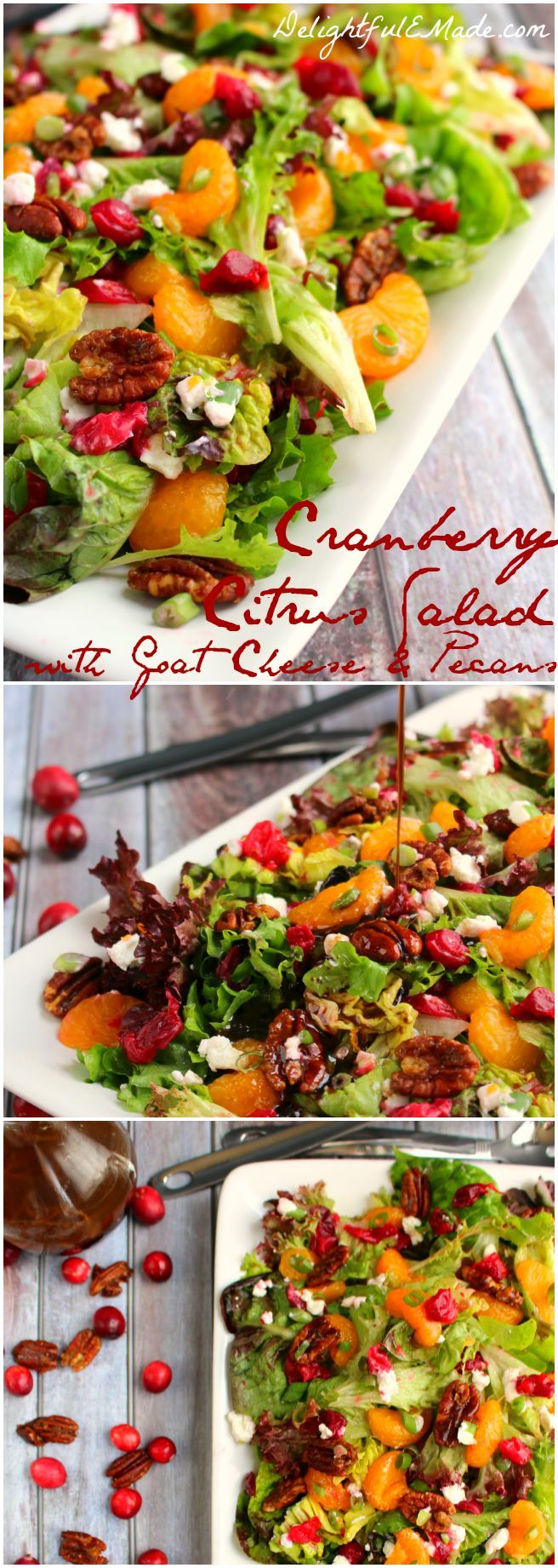The perfect side for your holiday dinner, this Cranberry Citrus Salad with Goat Cheese Crumbles and sweet Brown Sugar Pecans is flavorful and delicious!