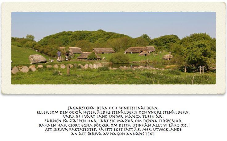 TOUCH den här bilden: Forntiden, Stenåldern Stäppen åk 3 by Katharina Kulle. I bilden finns barnens arbete om stenåldern samlade.