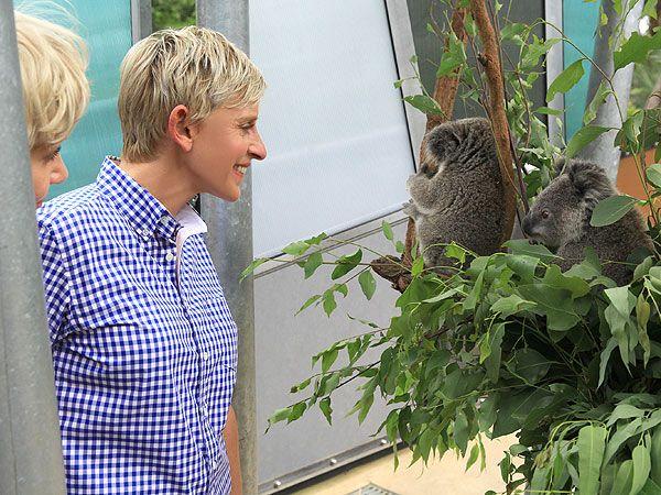 Now we know were Ellen got the idea of koalaing!! And does this look a bit like Ellen in a school dress?!!