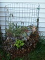 Several different ways to start a compost bin