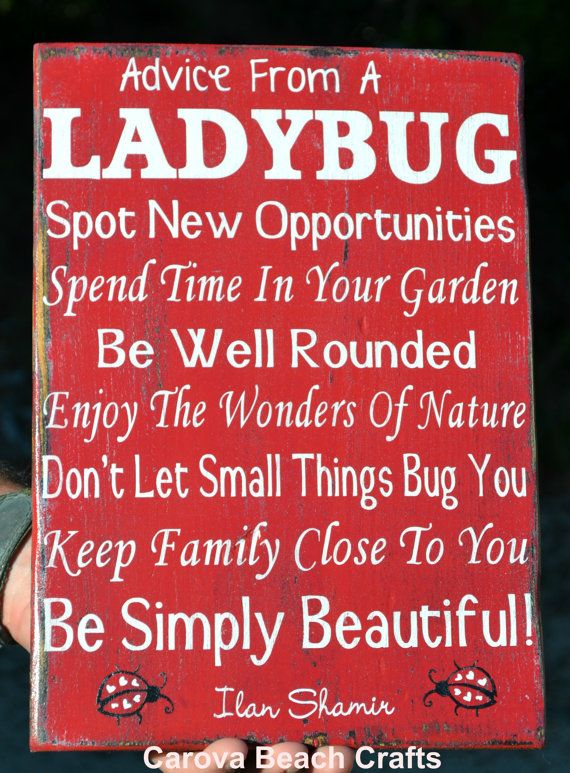 Ladybug Sign - Spring Home Decor - Garden Art - Advice From A Ladybug - Kitchen Decor - Porch Outdoor Sign - Nature Gift Woodland Rustic Red