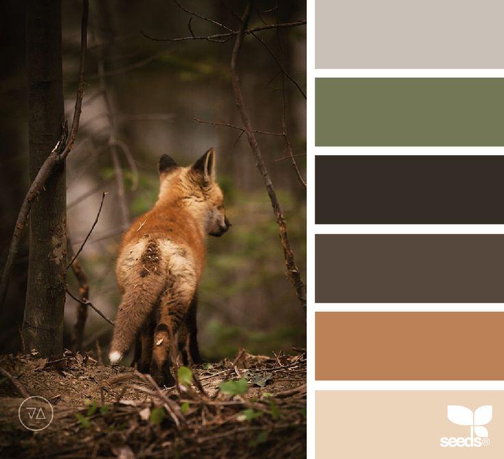 Une palette de couleurs parfaite pour le mois d'octobre.