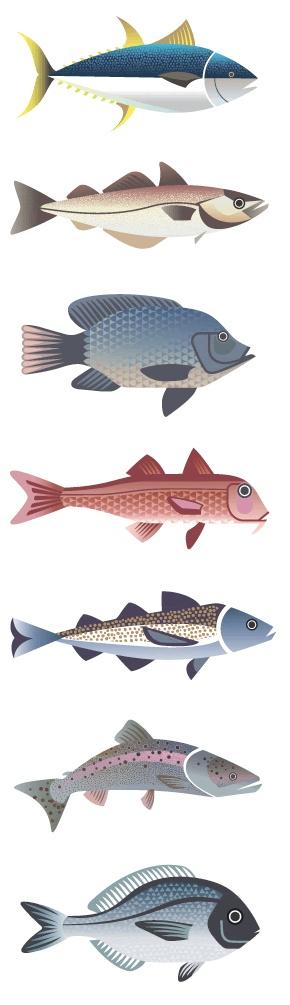 Fische                                                                                                                                                                                 Mehr