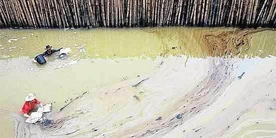 Reise Guru-Thailand      : Ölpest: Wettlauf gegen die Zeit