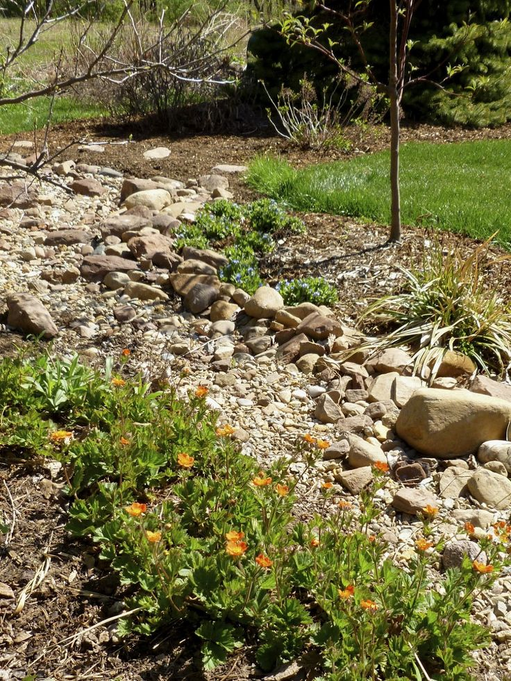 93 best Swale images on Pinterest Dry creek bed Garden ideas