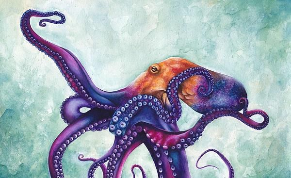 pretty octopus painting