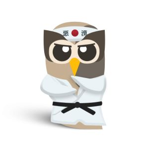 How To: 6 Easy Tips to Become a HootSuite Ninja - The Next Web