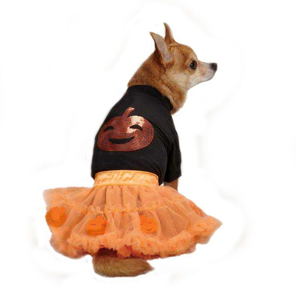 radiant with halloween sparkle our adorable zack zoey pumpkin skirt set is ready for any party each two piece set features a dog t shirt with sequin - Dogs With Halloween Costumes On