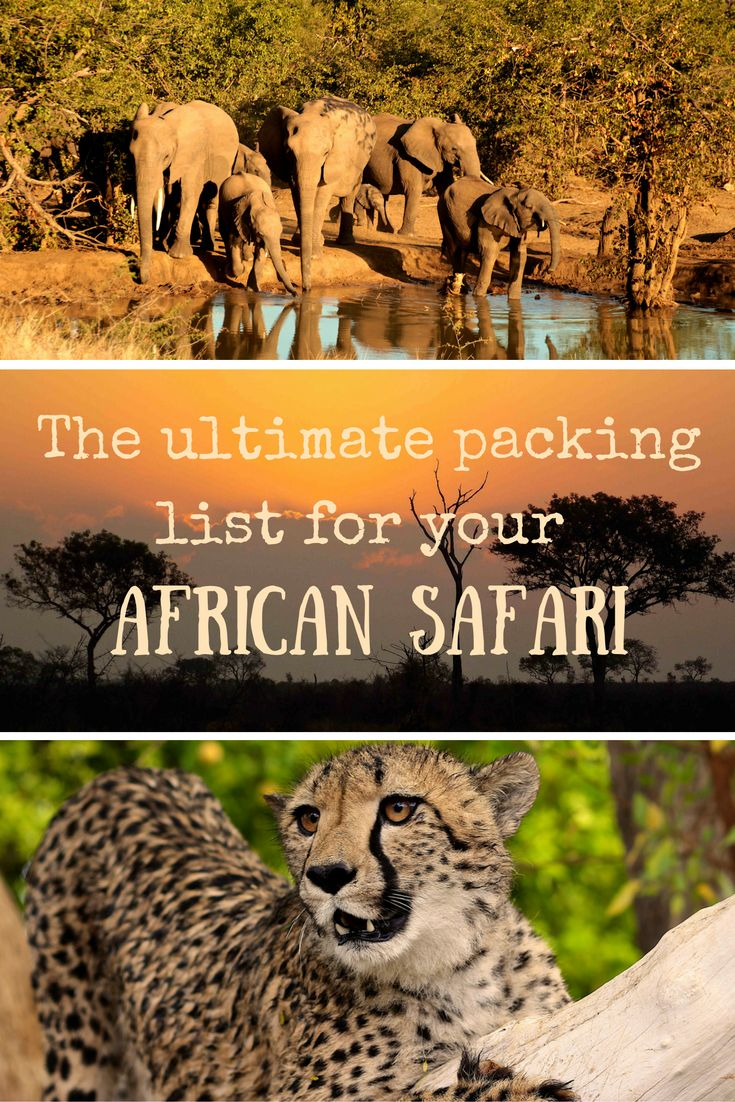 The ultimate packing list for your African safari | African safari packing list | the best african safari packing list | the best packing list for an african safari | #africansafari #africa #packinglist