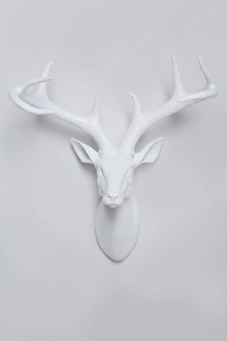 decor and deer kids en head stag com wall decorative bouclair baby