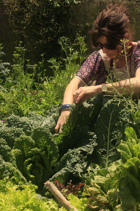maintaining the vege garden