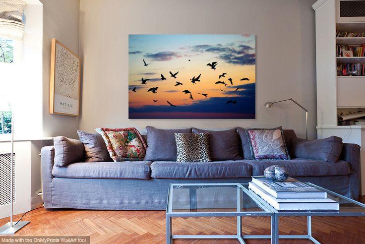 Inspiring Sunset Photograph Flock of Seagulls Photo Dramatic