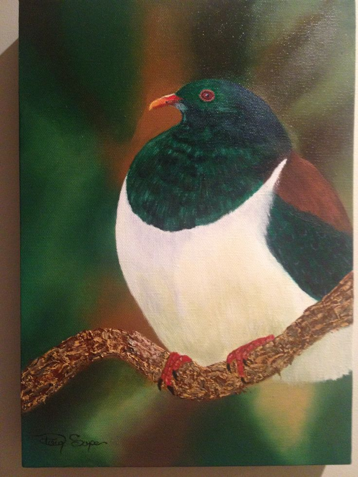 """""""Kereru"""". My first attempt at painting feathers. A big learning curve!"""