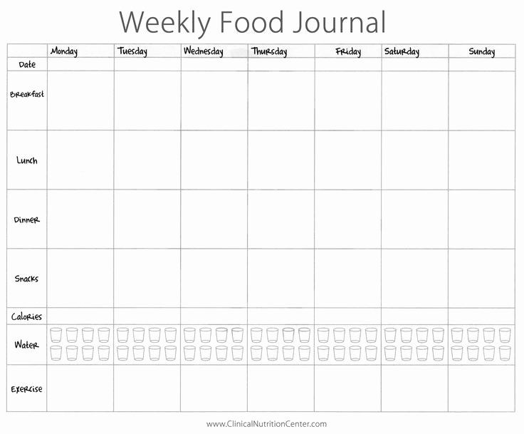 New 60 Illustration Printable Diet Tracking Calendar Food Diary Food Journal Food Diary Template