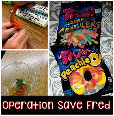 Save Fred!  Great first day activity.  Wonderful for teamwork.  The kids love this!