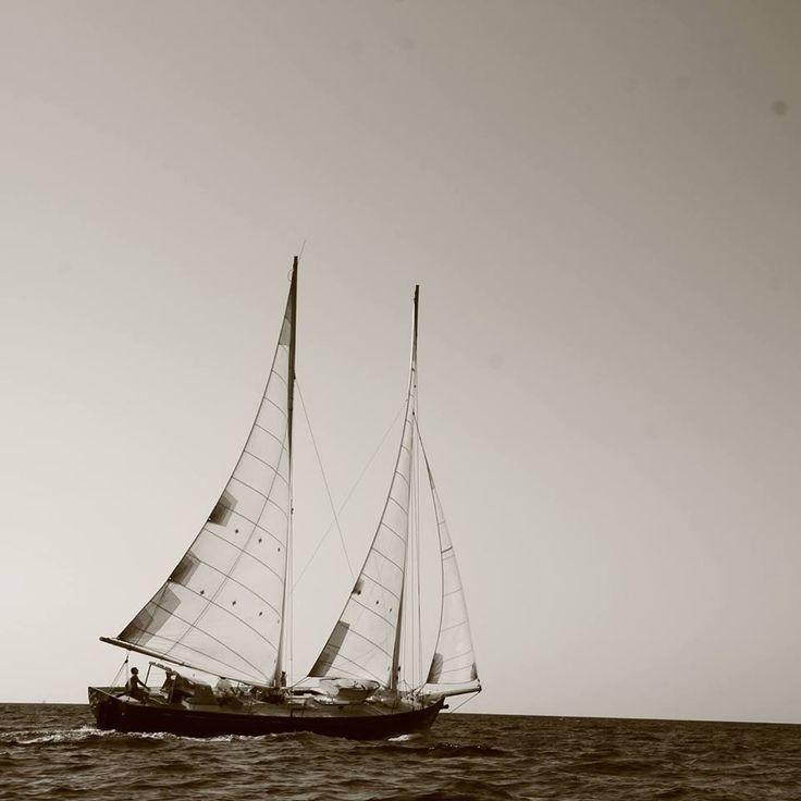 Il Dragut è uno schooner bermudiano, progettato da Carlo Sciarrelli e terminatonel 1985 dal maestro d'ascia Piero Crosato, a Roncade (TV), interamente in legno di cedro ed alberi in spruce. Il…