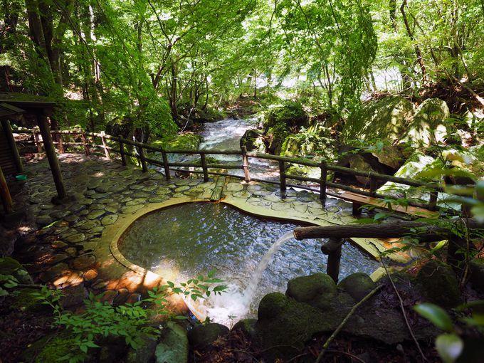 那須塩原 公共混浴露天風呂 岩の湯 栃木