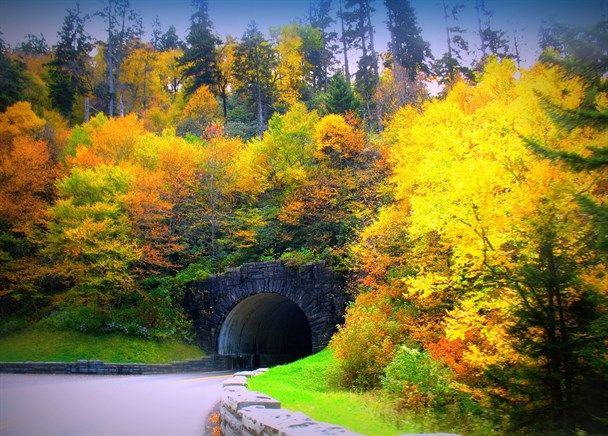 Fall in Great Smoky Mountains by P Burgess #GatlinburgMoments