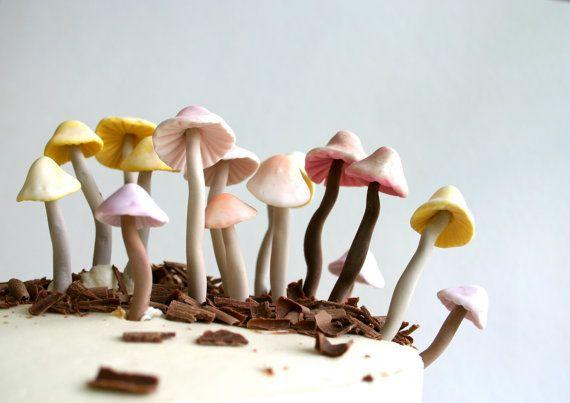 Sweet Candy colorato funghi selvatici / una collezione di 42 caramella appena raccolto funghi