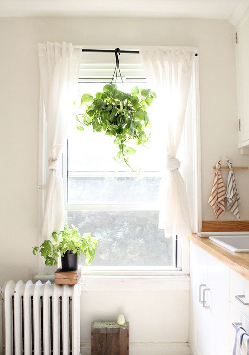 Simple, clean space. White cabinets and walls, pop of green with plants.