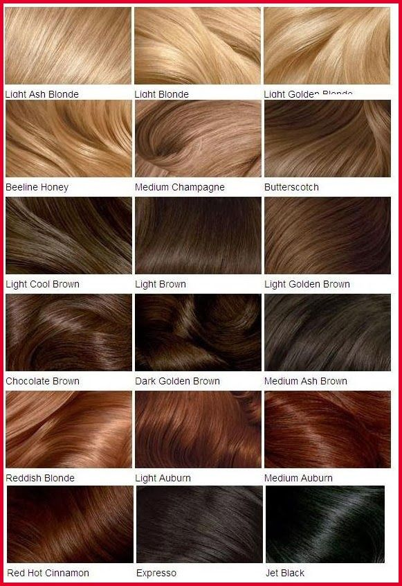 Inspirational Hair Color Chart Shades Gallery Of Hair Color Style Blondehairchartshades Differentshad Loreal Hair Color Clairol Hair Color Chart Hair Styles