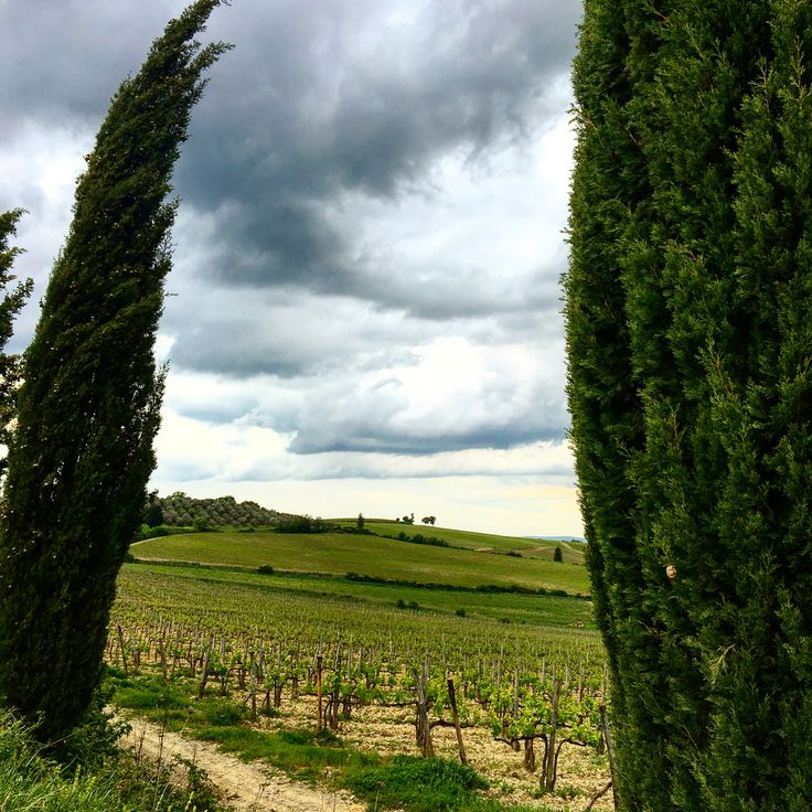 Grey sky over the hills of Chianti