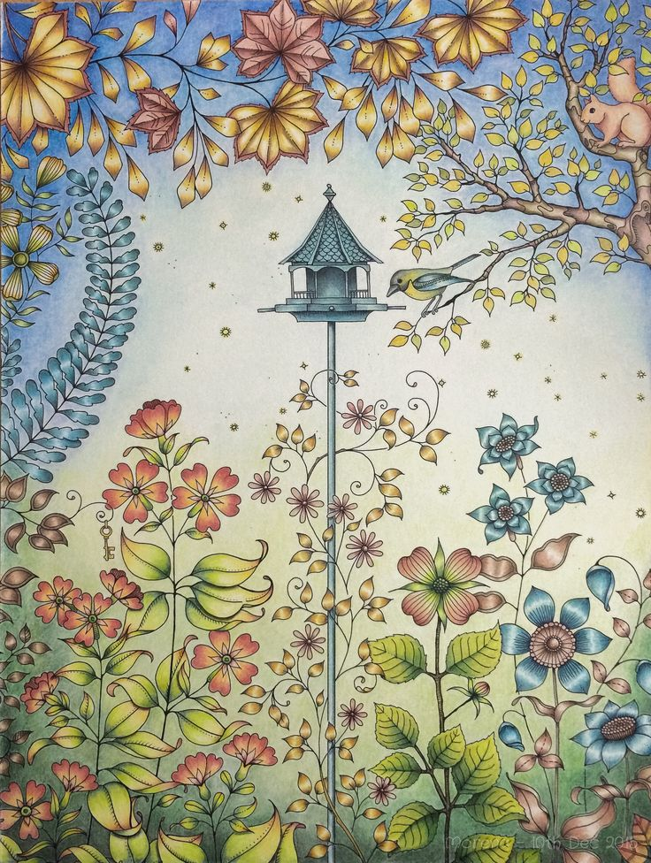 Secret Garden Artists Ed Coloured By Morena Vajak Johannabasford MyCreativeEscape Johanna Basford GardenSecret Coloring BookAdult