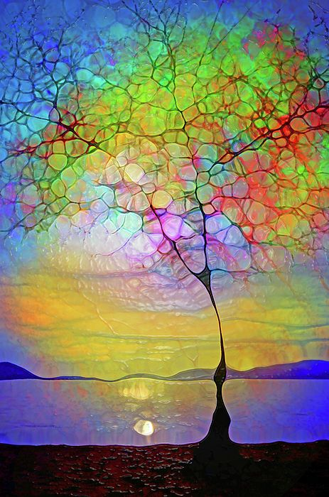 wouldn't this be a beautiful stained glass !!!!