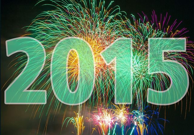 Everyone at Patriot Air Comfort Systems would like to wish you a Happy New Year! We hope  you have a great 2015! #NewYear #2015