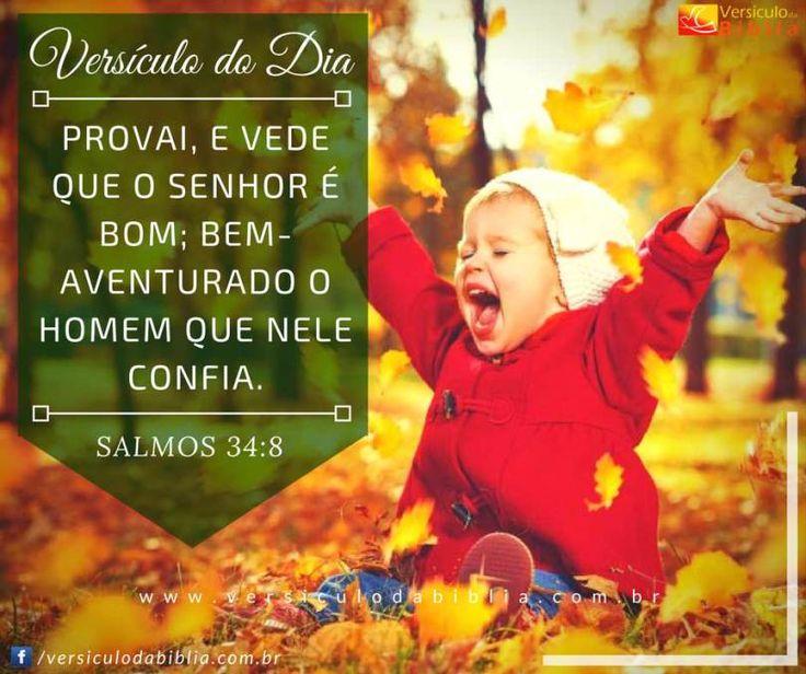 Versículo do Dia  Salmos 34:8 -  Provai e vede que o Senhor é bom; bem-aventurado o homem que nele confia.  Salmos 34:8  The post Versículo do Dia  Salmos 34:8 appeared first on Versículo da Bíblia.