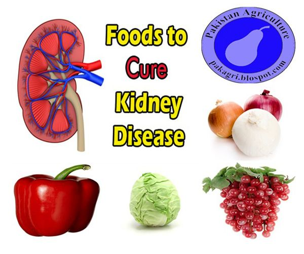 Healthy Food For Kidney Cancer Patients
