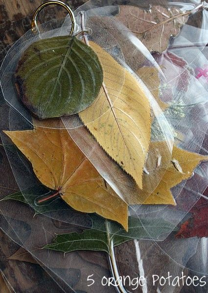 make leaf rubbing plates
