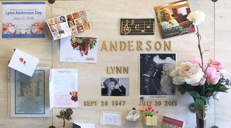 Best 25 Lynn Anderson Ideas On Pinterest Rose Garden