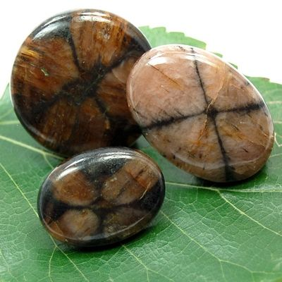 Metaphysical Directory: Summary - Information About Crystals As A Healing Tool - Chiastolite   Protection, Health, Harmony   Primary Chakras: Sacral, Root   Astrological signs: Libra, Capricorn