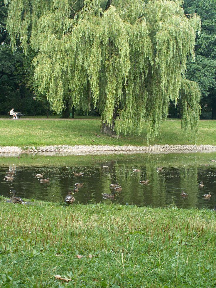 Park Źródliska - one of the oldest parks in Lodz, Poland