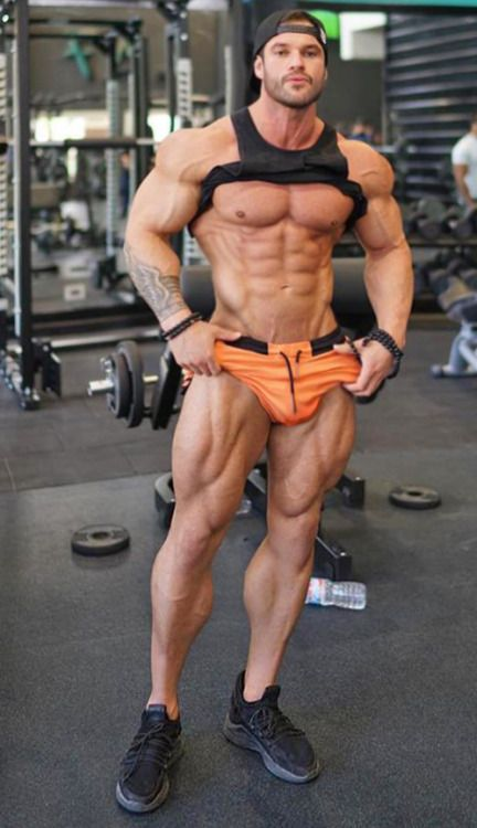 shredded built by tallsteve pinterest muscle anatomy and