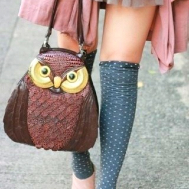 .: Knee High, Polka Dots, Owl Purses, Handbags, Style, High Socks, Dresses, Outfit, Owl Bags