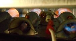 What color should the flame be in a natural gas furnace?