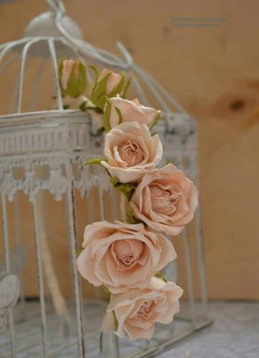 Ободочек с розами цвета айвори.