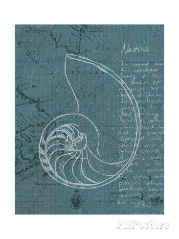 Coastal Blueprint V Dark Kunst van Marco Fabiano bij AllPosters.nl