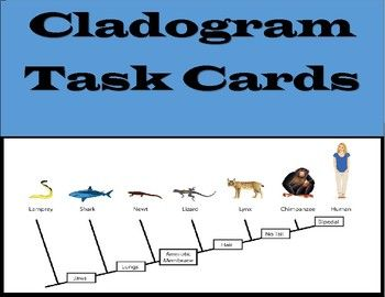 288 best ap biology images on pinterest teaching biology ap 40 task cards that will give students extra practice on cladograms this activity includes 9 fandeluxe Image collections