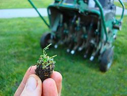 Popular How To Aerate a Lawn