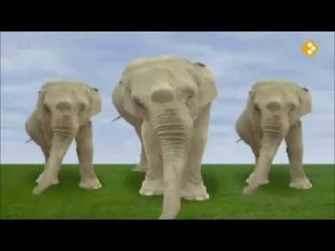 17 best images about taaltas knoop het in je slurf on pinterest maze tes and videos - Trophy olifant kartonnen ...