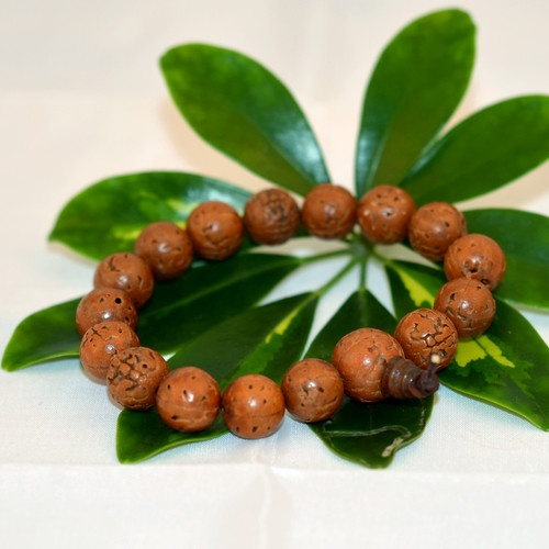 Nakali Buddhist Jewelry Dragon Eye Bodhi Seed Prayer Bead Bracelet Red Brown