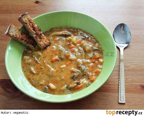 Hustá polévka z hlívy ústřičné