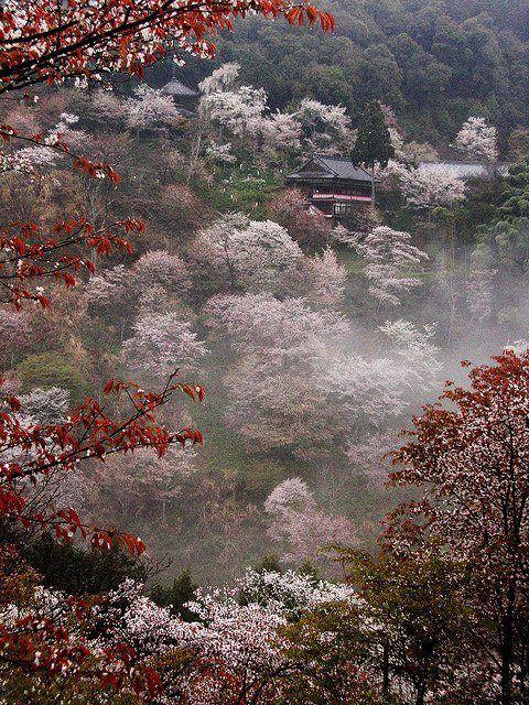 Yoshino misty temple, Japan