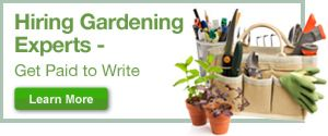 Guide to Container Gardening (Page 2) | Garden Guides