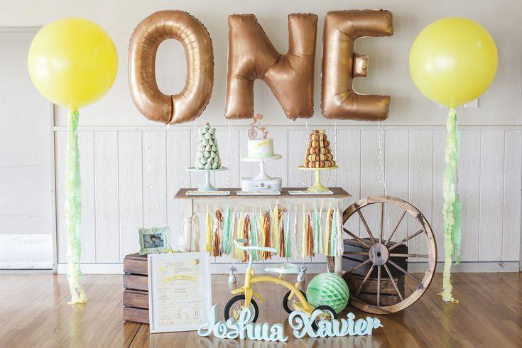 Joshua's First Birthday Party